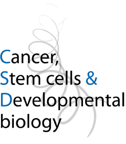 Phd thesis in biology